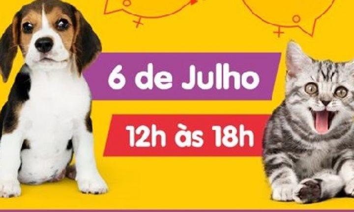 Dia 6 de julho tem Feira de Adoção de Pets em Avaré