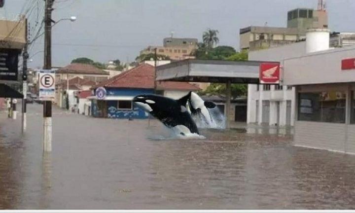 Problema das enchentes vira meme em Avaré