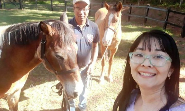 Ladrões furtam um cavalo e uma égua da Fundação Padre Emílio