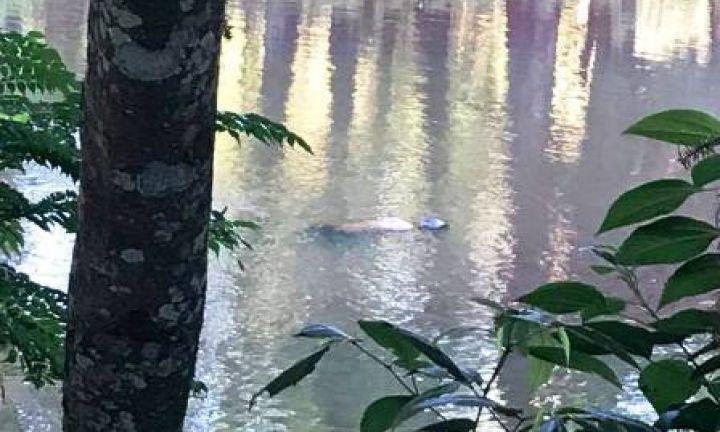 Corpo encontrado em lago do Horto é de jovem desaparecido