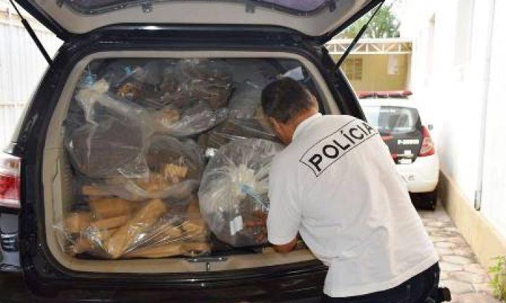 Polícia Civil incinera mais de 290 quilos de drogas