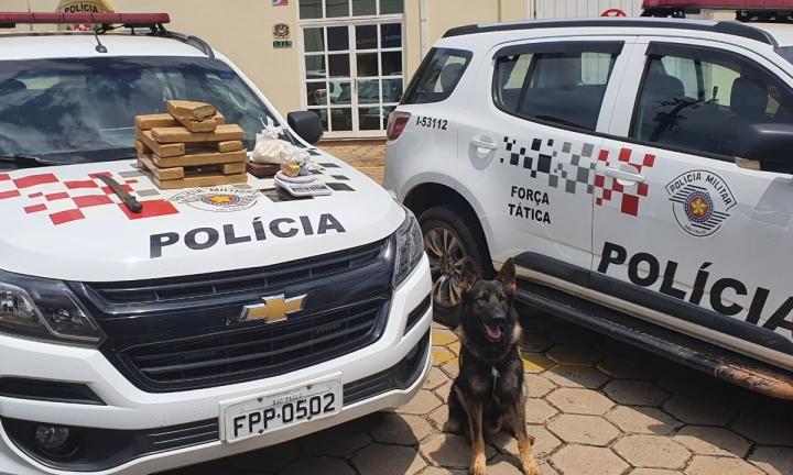 Polícia Militar prende dois homens com mais de 10 kg de drogas em Avaré