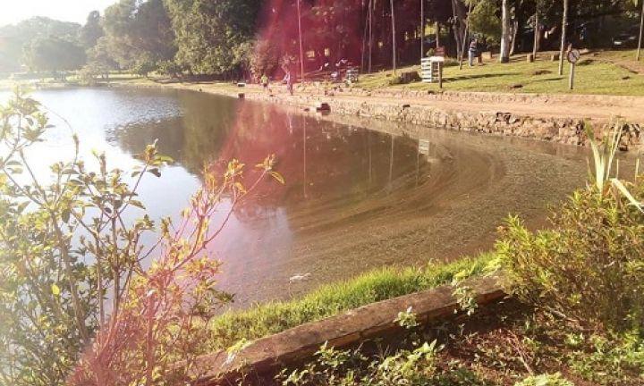 Cidadã denuncia possível derramamento de óleo no lago do Horto