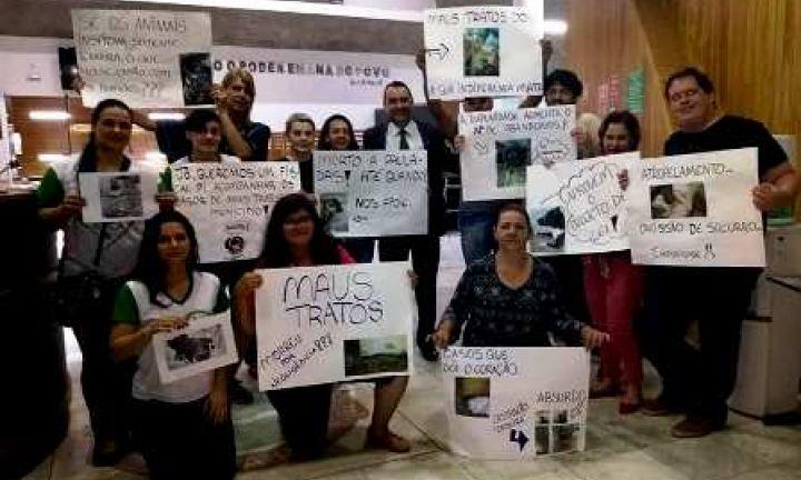 Câmara aprova PL que pune com multas maus-tratos a animais