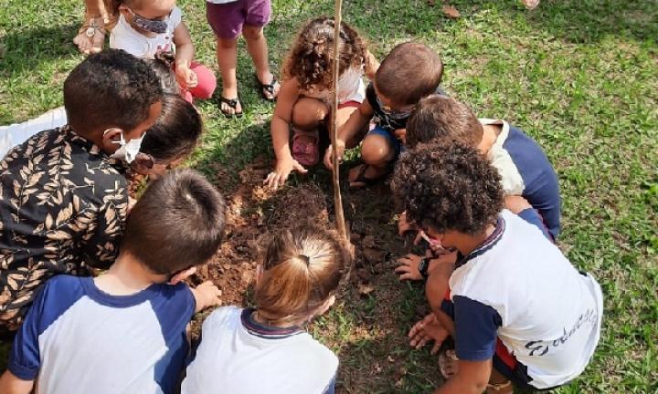Dia da Árvore é celebrado com plantio de mudas em Avaré