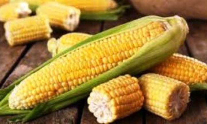 Festa do Milho da Colônia Espírita é amanhã