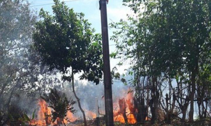 Bombeiros atendem mais de dez ocorrências de fogo em mato no domingo