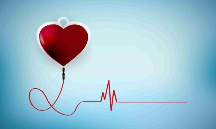 OAB Avaré realiza Campanha de Doação de Sangue