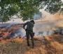 Incêndio em área de pasto mobiliza Corpo de Bombeiros em Avaré