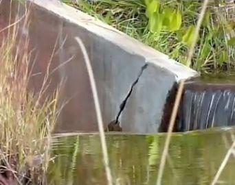 Barragem com risco de rompimento terá esvaziamento parcial