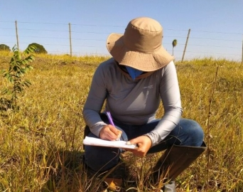 Novos estudos arqueológicos foram realizados em Avaré
