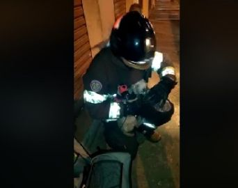 Bombeiros salvam cachorrinha em incêndio a residência
