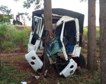 Motorista fica gravemente ferido após caminhão bater em árvore