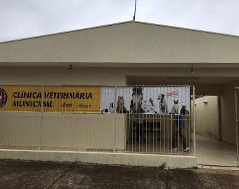Clínica Veterinária reabre em outubro agendamento para castrações