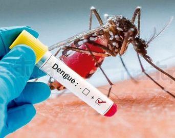 Avaré já registrou 10 casos positivos de dengue este ano