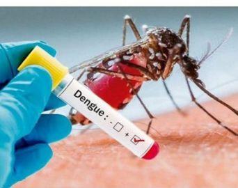 Avaré registra maior número de casos de dengue da microrregião