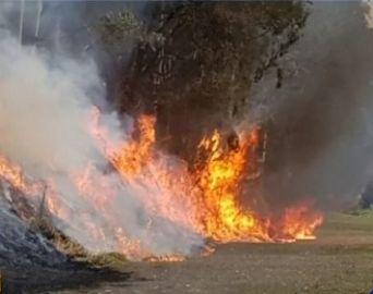 Corpo de Bombeiros registra mais de 100 queimadas na região