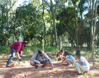 Projeto do Meio Ambiente cria horta orgânica no Horto Florestal