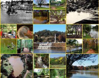 Secretário Estadual do Meio Ambiente vai municipalizar o Horto de Avaré