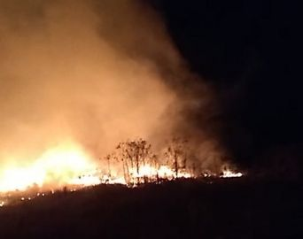 Incêndio atinge terreno particular em Avaré