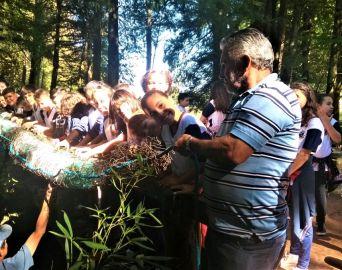 Horto Florestal recebe as primeiras ecobarreiras