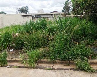Terreno com mato alto e sem calçada pode gerar multa