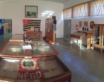 Secretária Municipal da Cultura vai representar museus da Amvapa