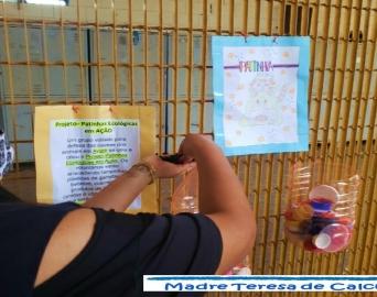Fundação CASA de Iaras colabora com o Patinhas Ecológicas, de Avaré