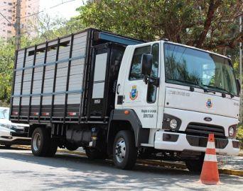 Prefeitura adapta caminhão para o resgate de animais