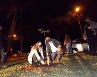 Rotary Club de Avaré inicia Projeto para plantio de mil árvores