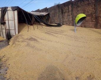 Caminhão carregado com soja tomba na área central de Avaré
