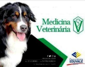 Eduvale anuncia novo curso: Medicina Veterinária