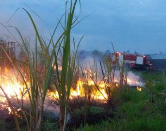 Fogo atinge plantação de cana e área de preservação em Cerqueira César